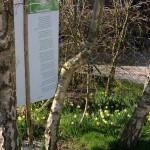 gedicht in de lente
